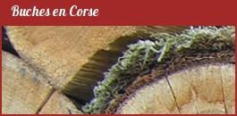 Fondacci : Bois de chauffage en Corse